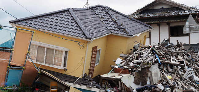 Property Subsidence: New Law, Strict Liability and Ubuntu